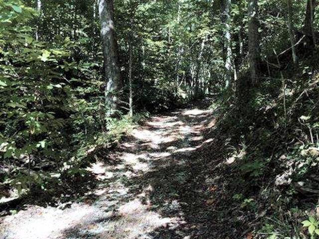 real estate photo 1 for 38.000ac Quercus Grove Rd Switzerland County, IN 47040