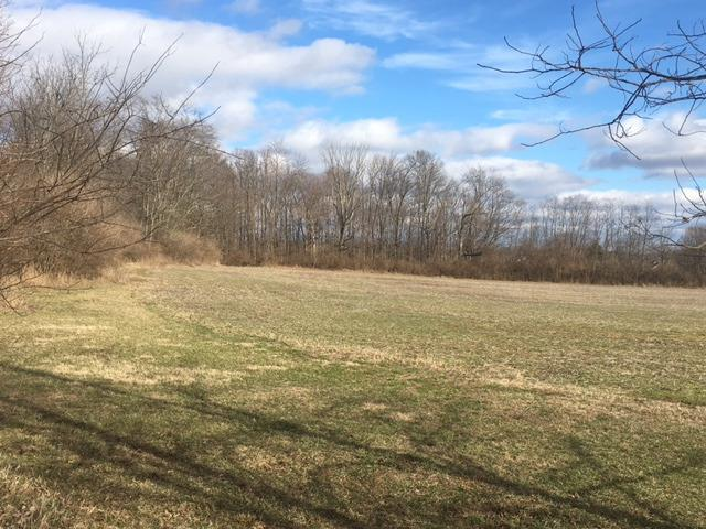 58.5ac St Rt 350 Green Twp. - Clinton Co., OH
