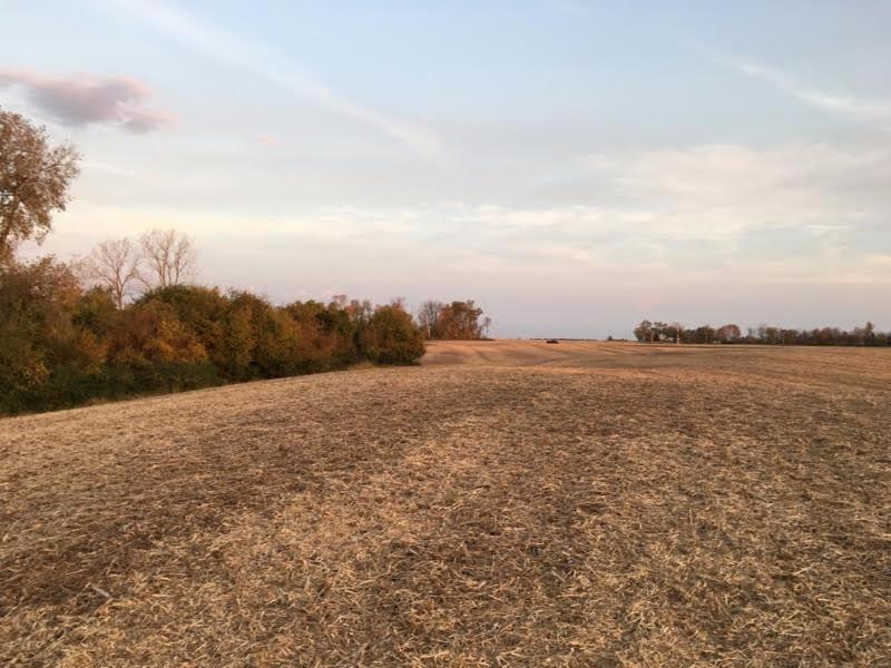 Photo 1 for 8.276ac Tice Rd Wayne County, IN 47330