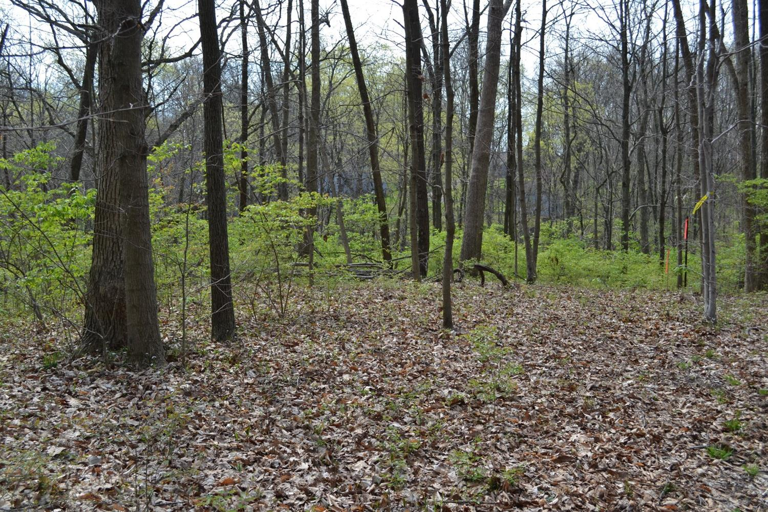 6.378ac Asher Rd Preble County, OH