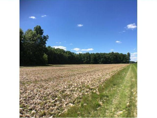 98.19ac N County Line Rd Jackson Twp, IN