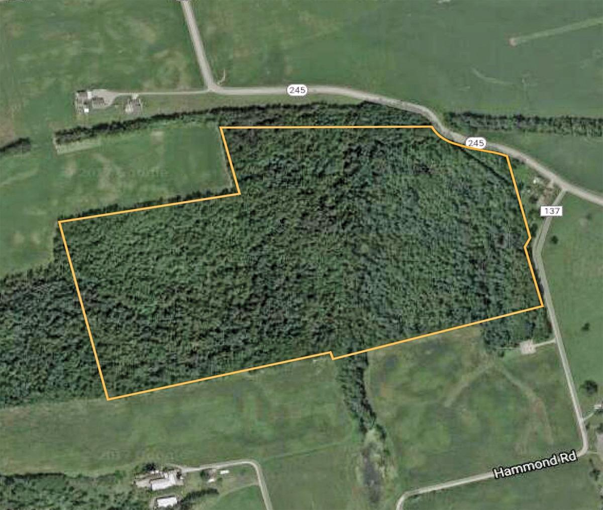 74ac Hammond Rd Champaign County, OH