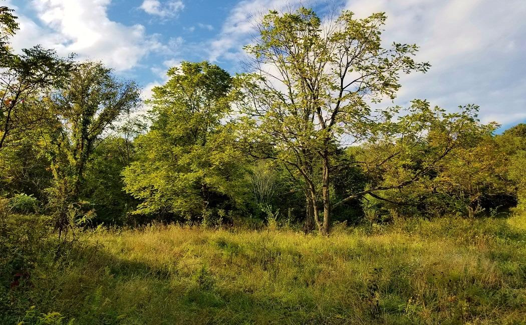 71ac Keesee Rd Gallia County, OH
