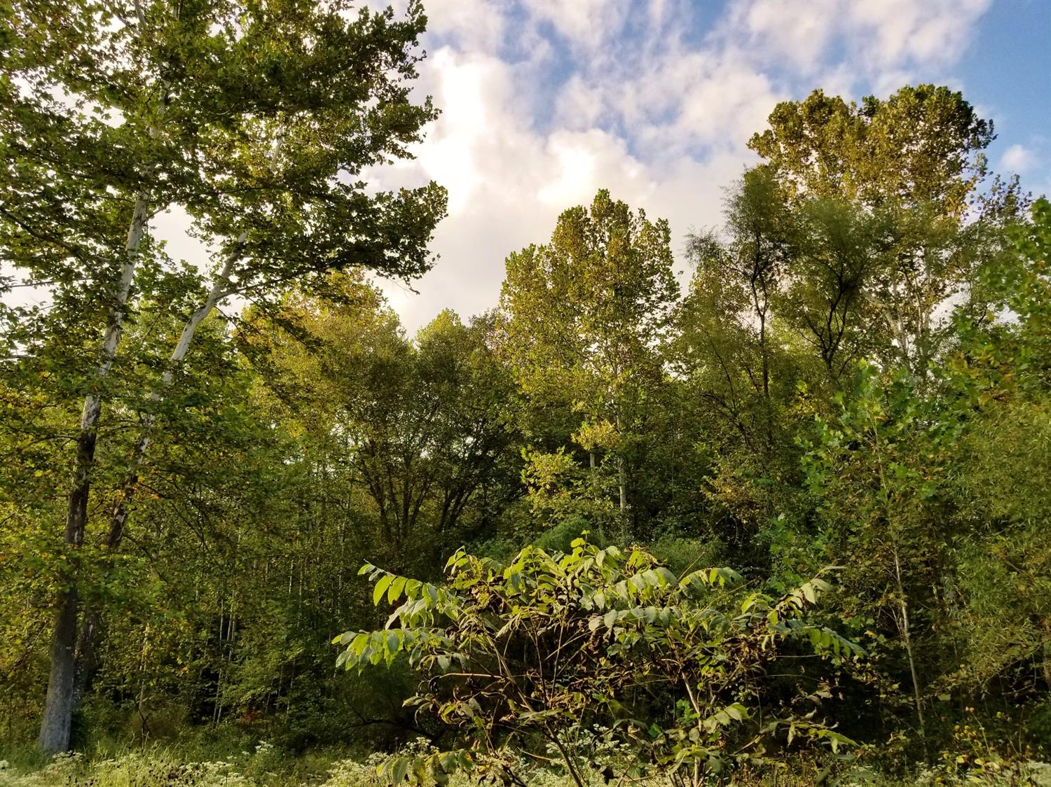 55ac Keesee Rd Gallia County, OH