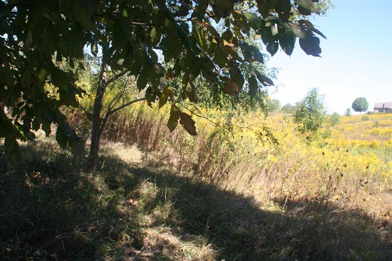Photo 2 for 5.37ac Mt Pleasant Rd Lawrenceburg, IN 47025