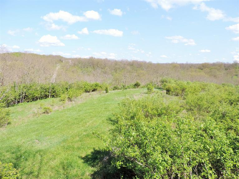 Photo 1 for 3.25ac Springwood Ct Greendale, IN 47025
