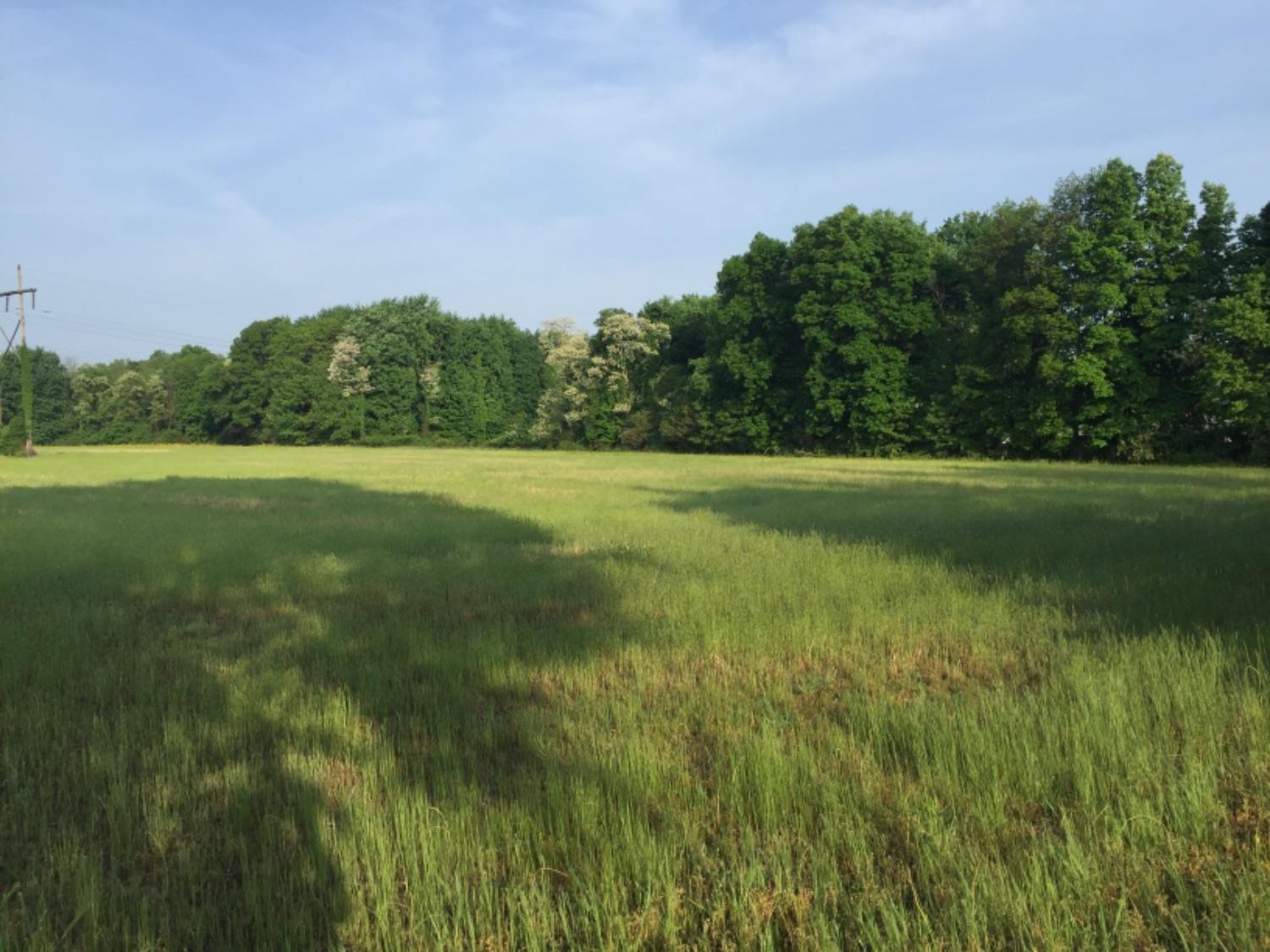 5.001ac Middleboro Rd Harlan Twp., OH