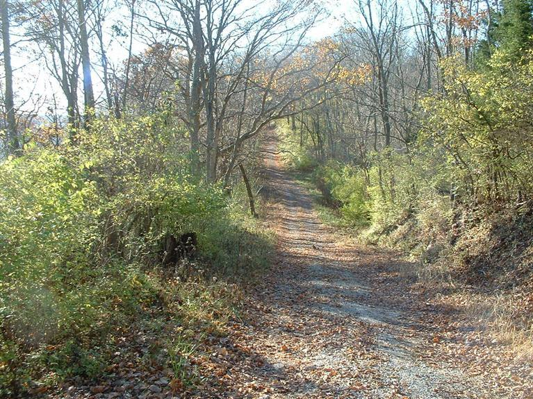 17.97ac Old State Rd Huntington Twp., OH