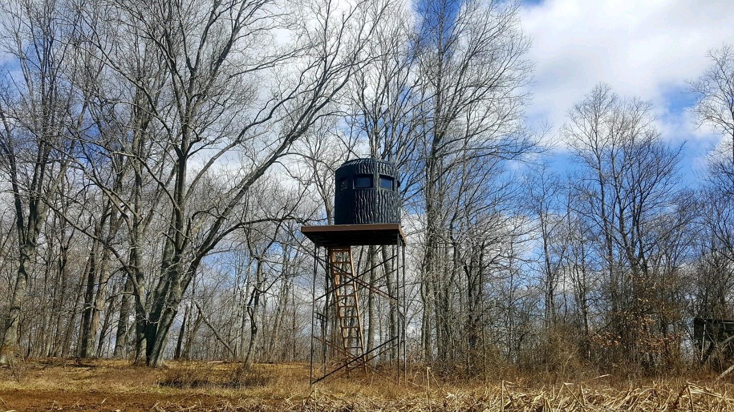 Photo 3 for 48.36Ac Leeth Creek Rd Pike County, OH 45690