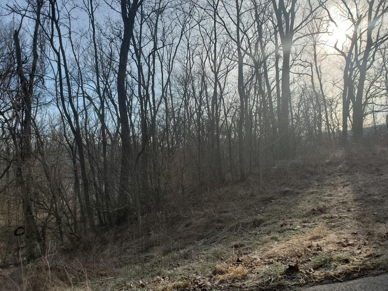 7.68ac E Laughery Creek Rd Dearborn County, IN