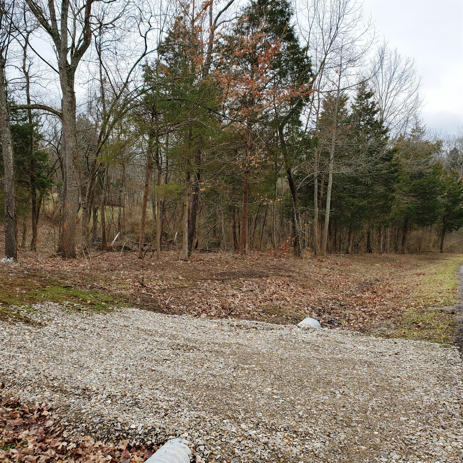 Photo 1 for 0 Serenity Ridge Dr Bright, IN 47060