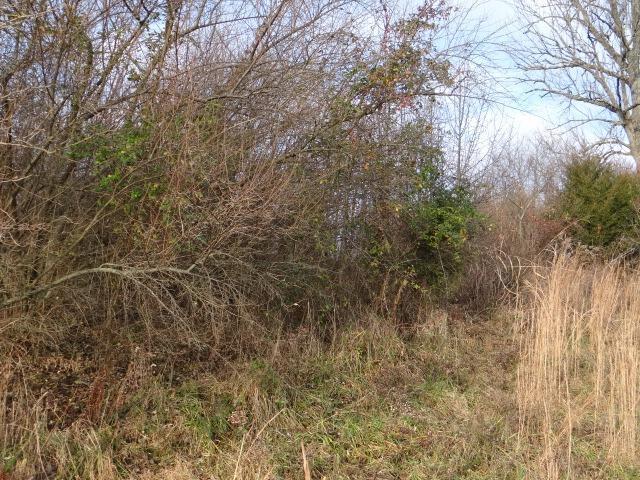 Photo 3 for 83 Diamond Hill Road Ohio Twp., OH 45157