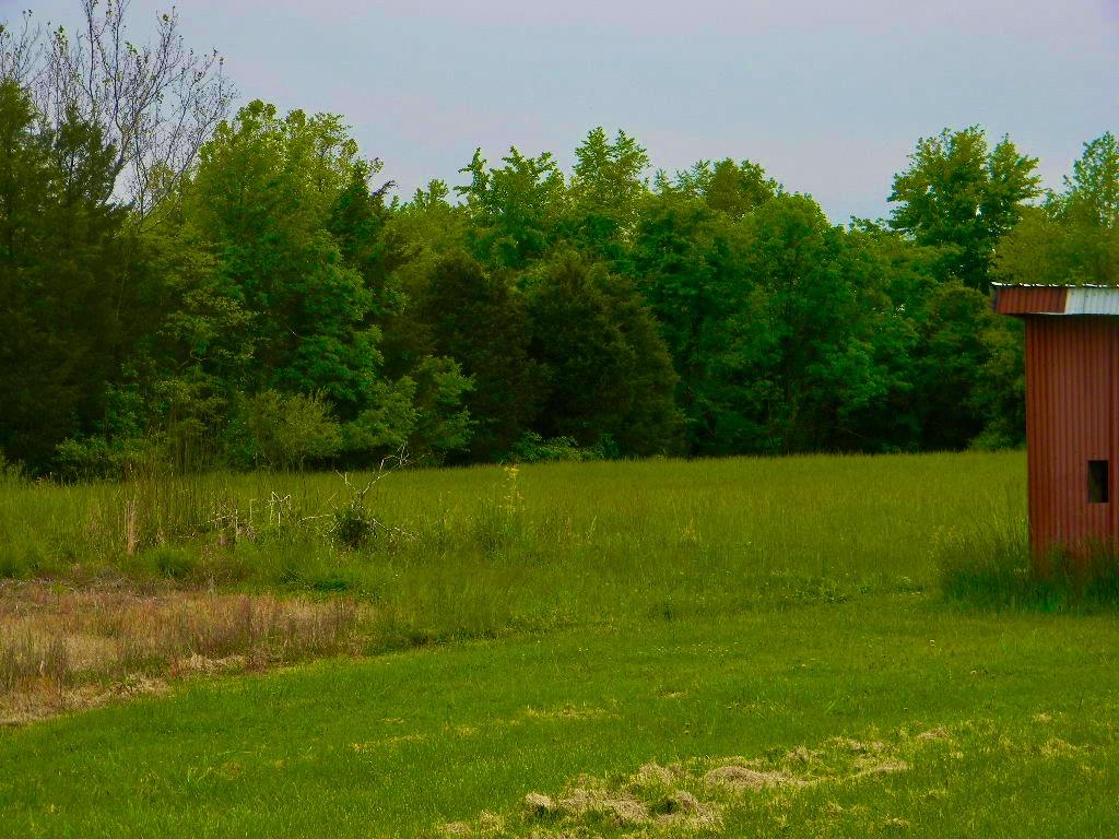 Photo 3 for 33 Acres Craver Road Stonelick Twp., OH 45150