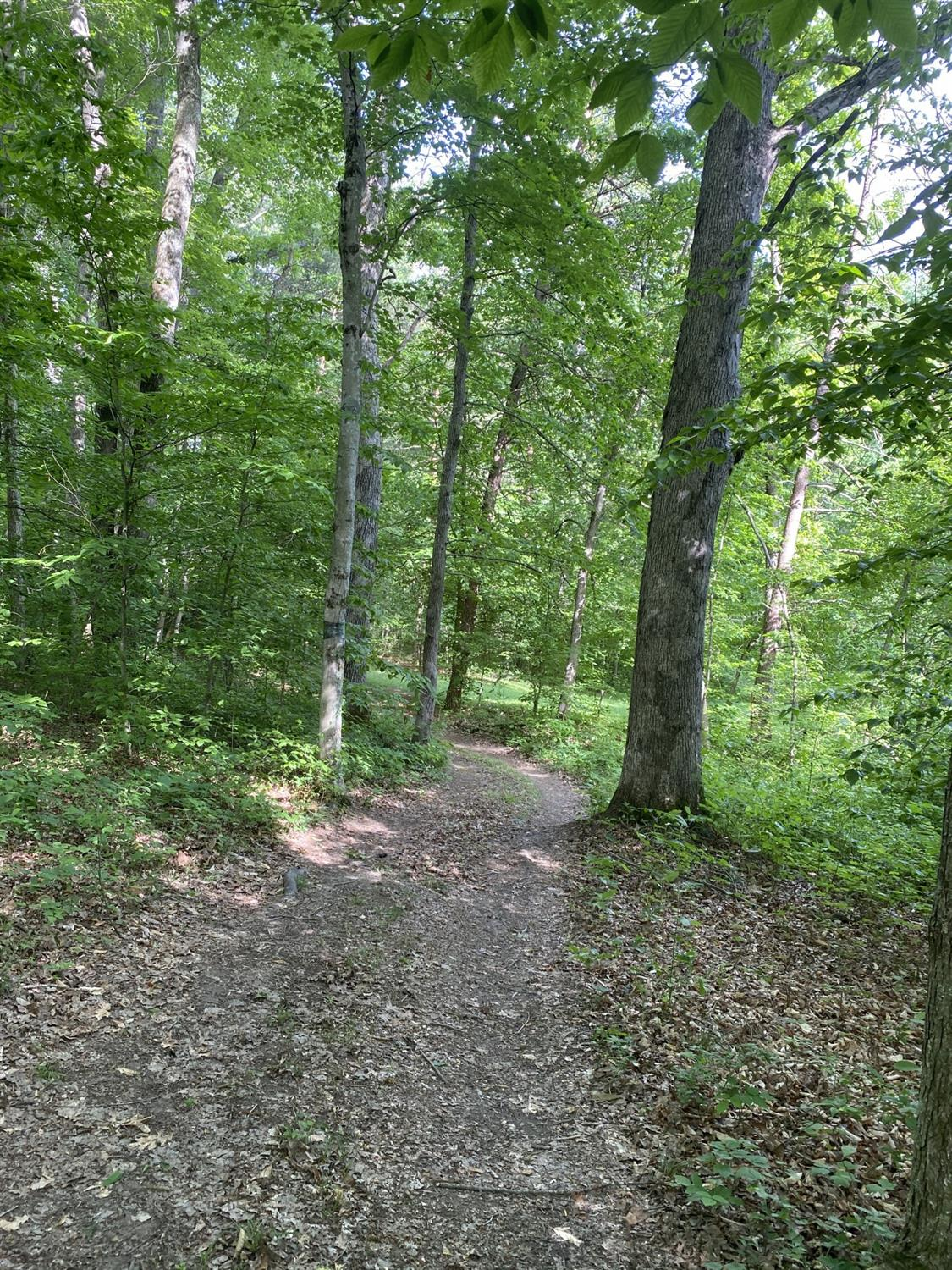 Photo 3 for 1295 Rock Run Road Jackson County, OH 45640