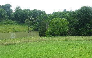 real estate photo 1 for Fisher Rd Foster, KY 41043