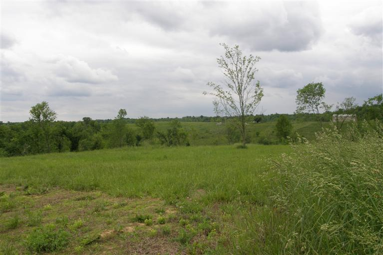 real estate photo 1 for 15243 Lot #9 Carlisle Rd, Lot 9 Piner, KY 41030
