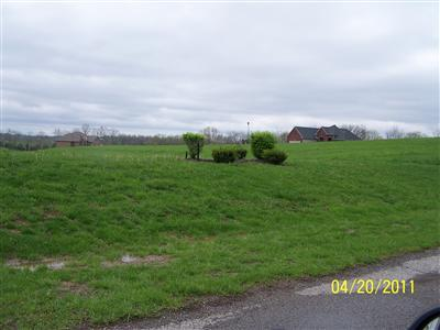 real estate photo 1 for Barnes Rd, 03 Williamstown, KY 41097