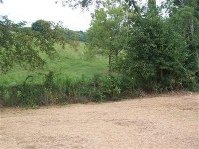 real estate photo 1 for 85 Lot Ten Mile Dr Crittenden, KY 41030