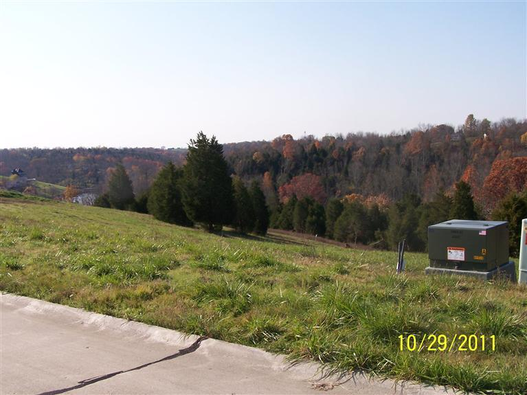real estate photo 1 for 56 Admiral Dr, Lt#56 Williamstown, KY 41097