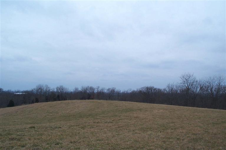 real estate photo 1 for 13.5Ac W Ky Highway 177 Butler, KY 41006