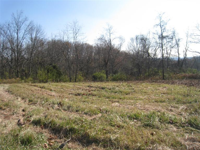 real estate photo 1 for Peach Grove Rd, Lot 9 California, KY 41007