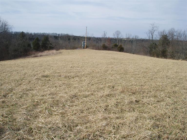 Photo 1 for Salem Ridge Rd., 6-10 Brooksville, KY 41004