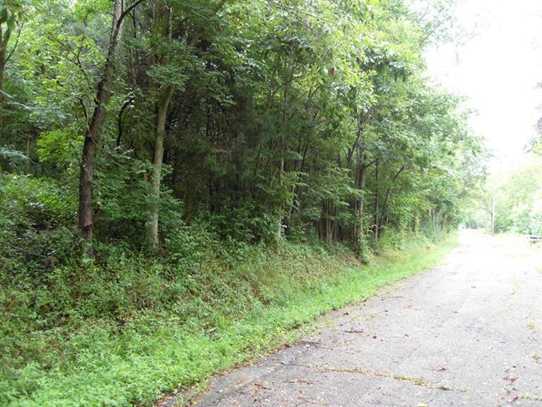 real estate photo 1 for Spur Rd California, KY 41007