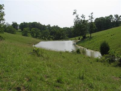 real estate photo 1 for 2275 tract 3 Mason Cordova Rd Corinth, KY 41010