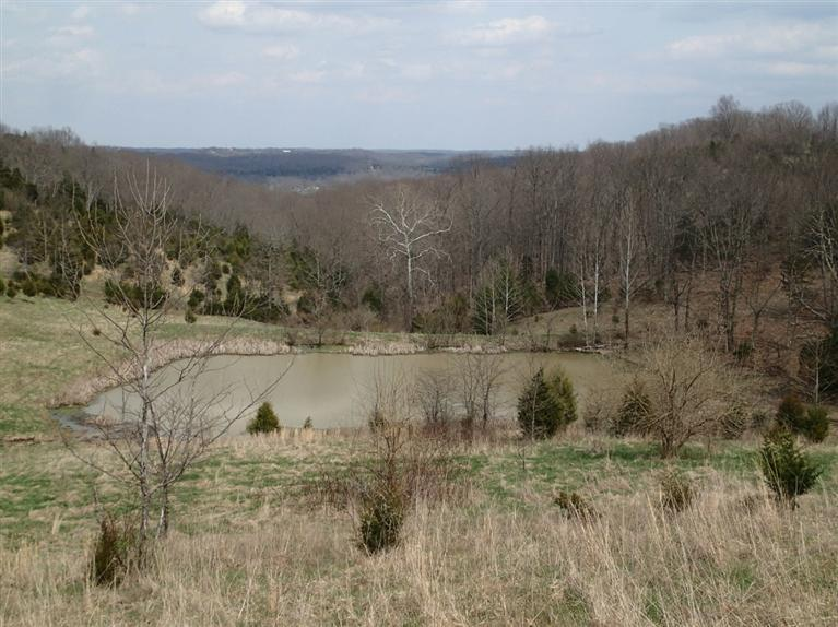 real estate photo 1 for 15191 Goshorn Rd Demossville, KY 41033