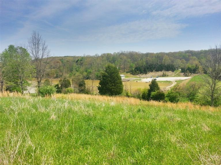 real estate photo 1 for Fields Rd Falmouth, KY 41040