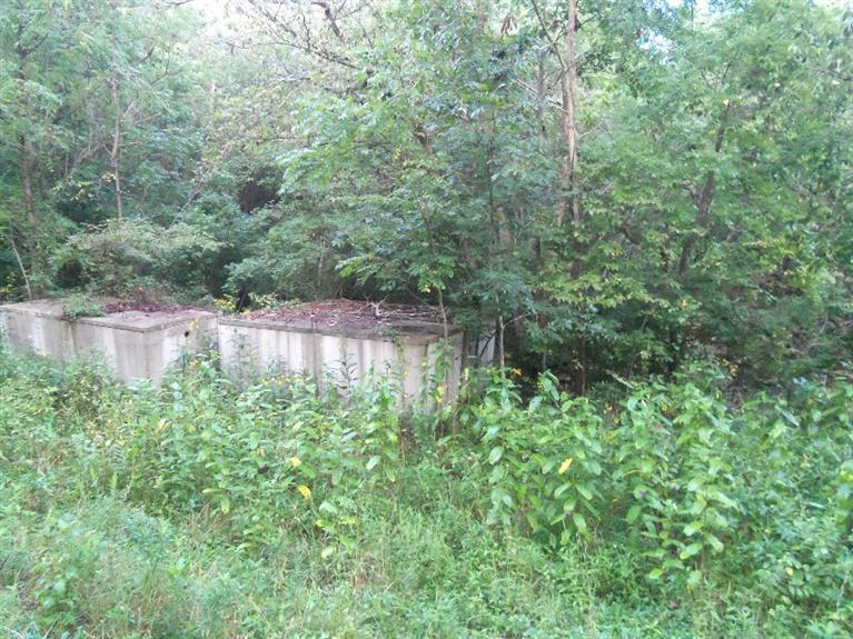 real estate photo 1 for 9.7 ac Highway 1109 Foster, KY 41043