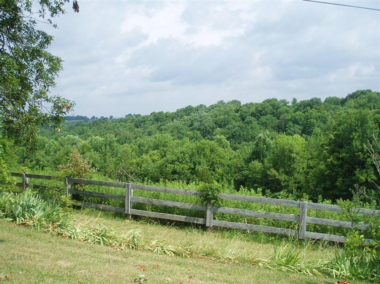 real estate photo 1 for 77 Linville Ln Mt Olivet, KY 41064