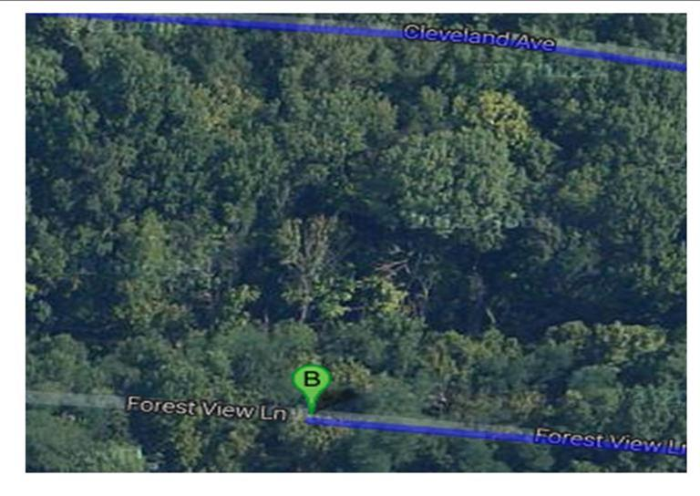 real estate photo 1 for Forest View Ln Taylor Mill, KY 41015