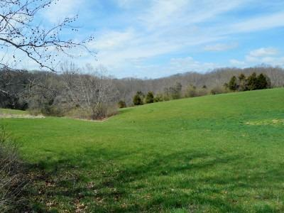 real estate photo 1 for Park Ridge Rd Sanders, KY 41083