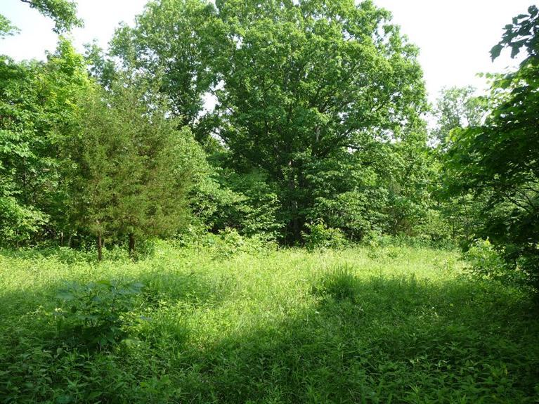 real estate photo 1 for Claxton Ridge Rd Owenton, KY 40359