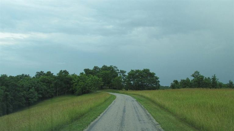 real estate photo 1 for 66.9Ac Taylor Jones Rd Falmouth, KY 41040
