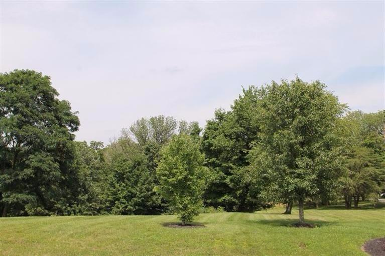 real estate photo 1 for 27 1A Monticello Verona, KY 41094