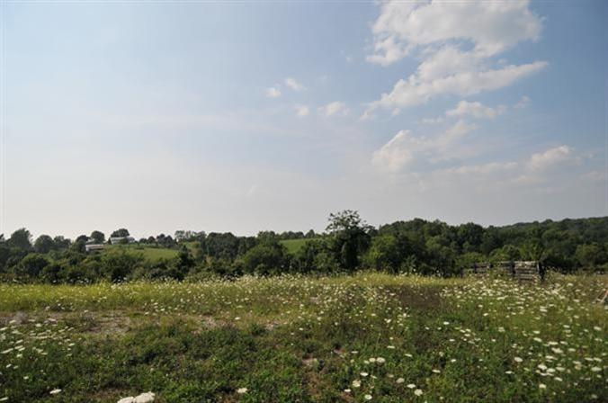 real estate photo 1 for Manor Ln, Lot I Verona, KY 41092