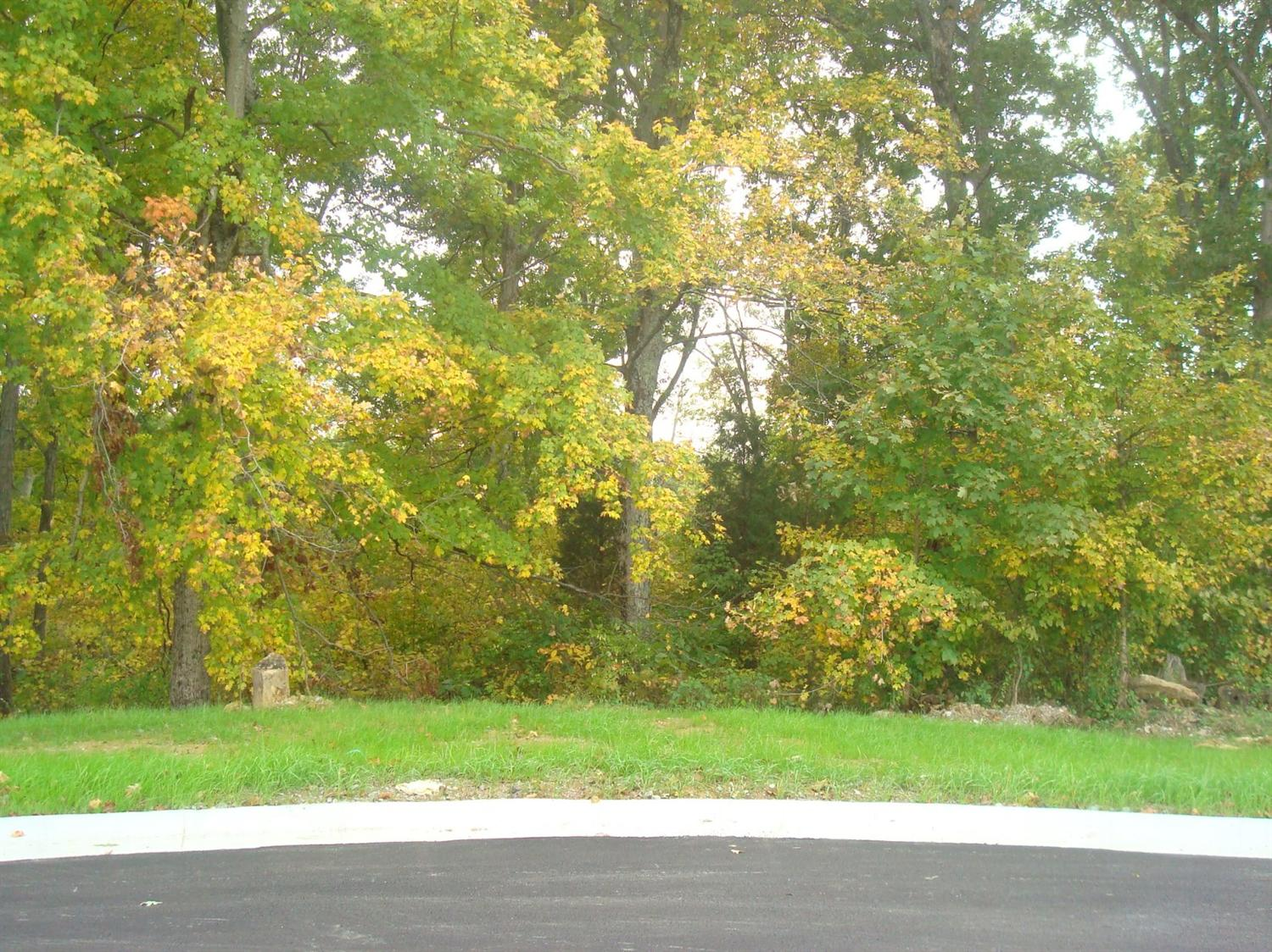 real estate photo 1 for Hannahs Way - Lot 79 Crittenden, KY 41030