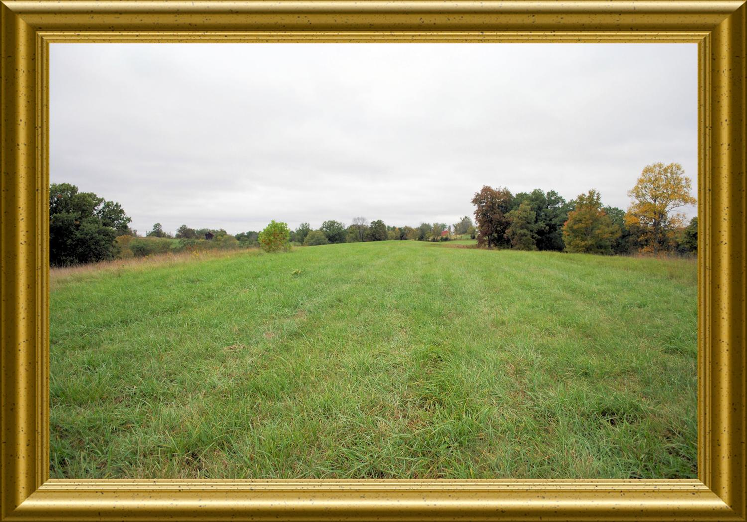 real estate photo 1 for 96.5ac Old Cynthiana Rd Williamstown, KY 41097
