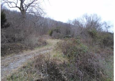 real estate photo 1 for 2350 US Highway 42 Warsaw, KY 41095