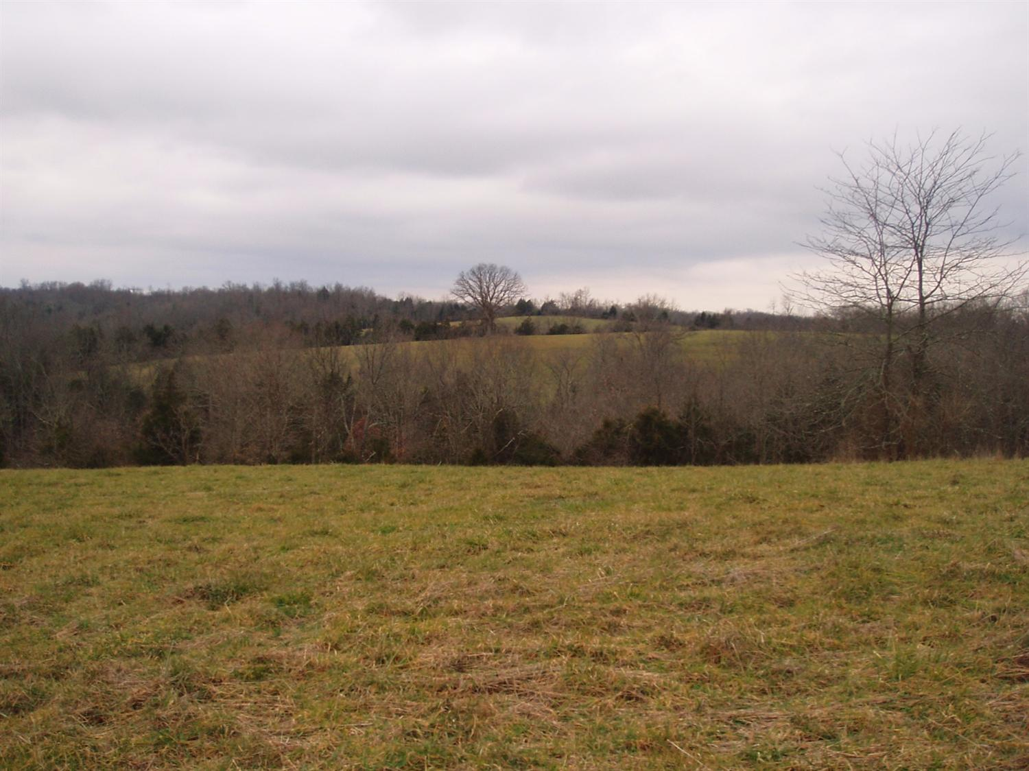 real estate photo 1 for 1446 Cook Ridge Rd Brooksville, KY 41004
