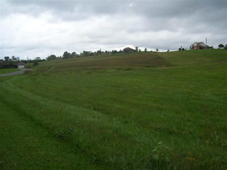 real estate photo 1 for 1.88acre Hartland Dr Falmouth, KY 41040