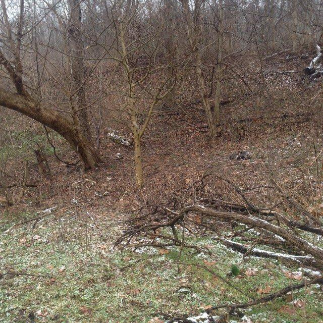 real estate photo 1 for Lot 2 River Rd Hebron, KY 41048