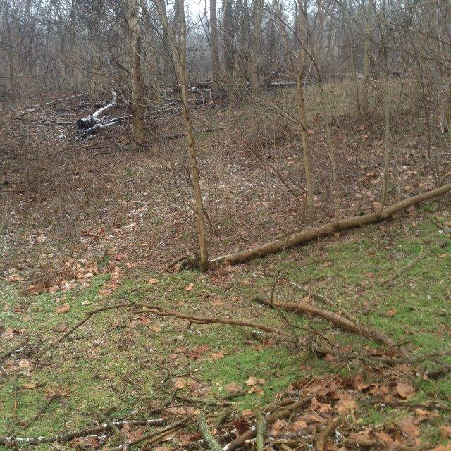 3734 Lot 3 River Rd, Tract
