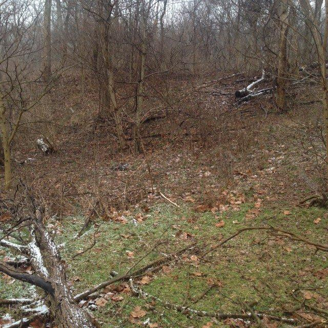 real estate photo 1 for 3734 Lot 4 River Rd, Tract Hebron, KY 41048