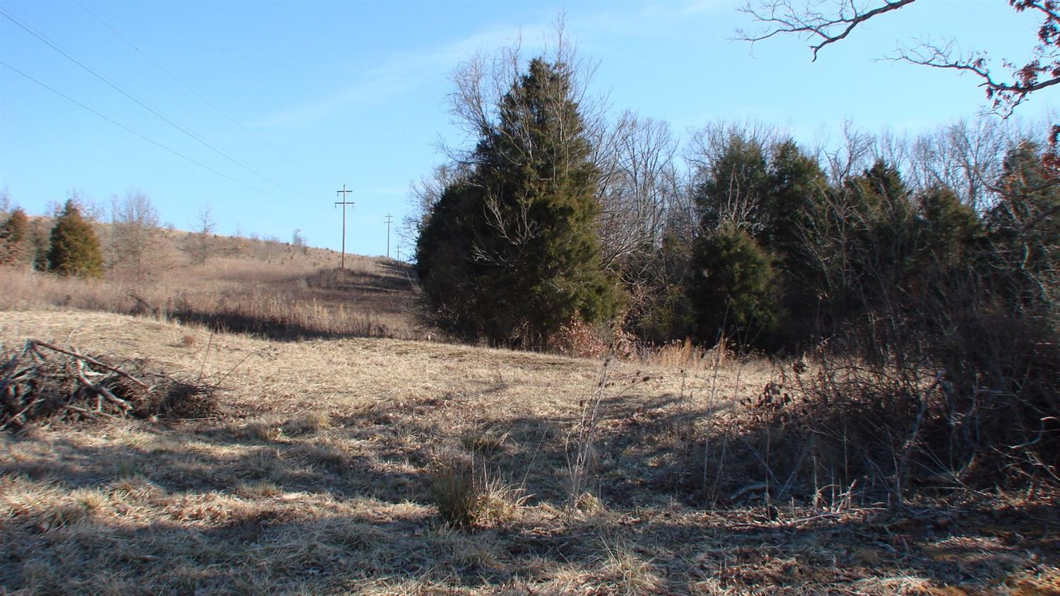 real estate photo 2 for 1083 Kensington Way, Lot 2 Alexandria, KY 41001