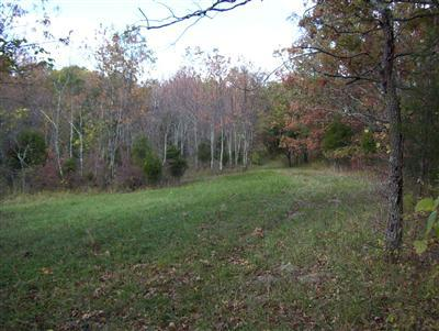 real estate photo 1 for 19 Acres Kennedy Ridge Rd Falmouth, KY 41040
