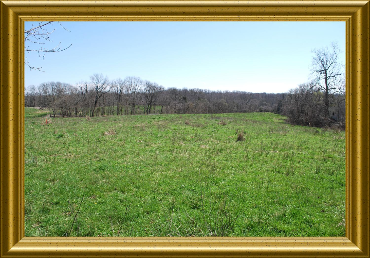 real estate photo 1 for 5.643 Porter Rd Verona, KY 41092