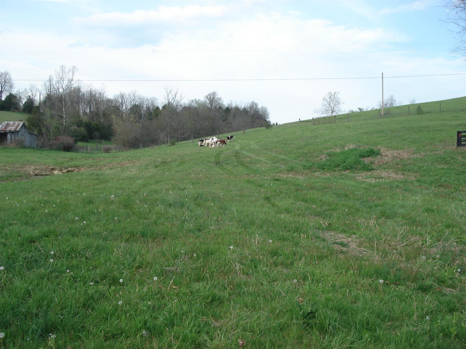 real estate photo 1 for Finnell Rd Georgetown, KY 40324
